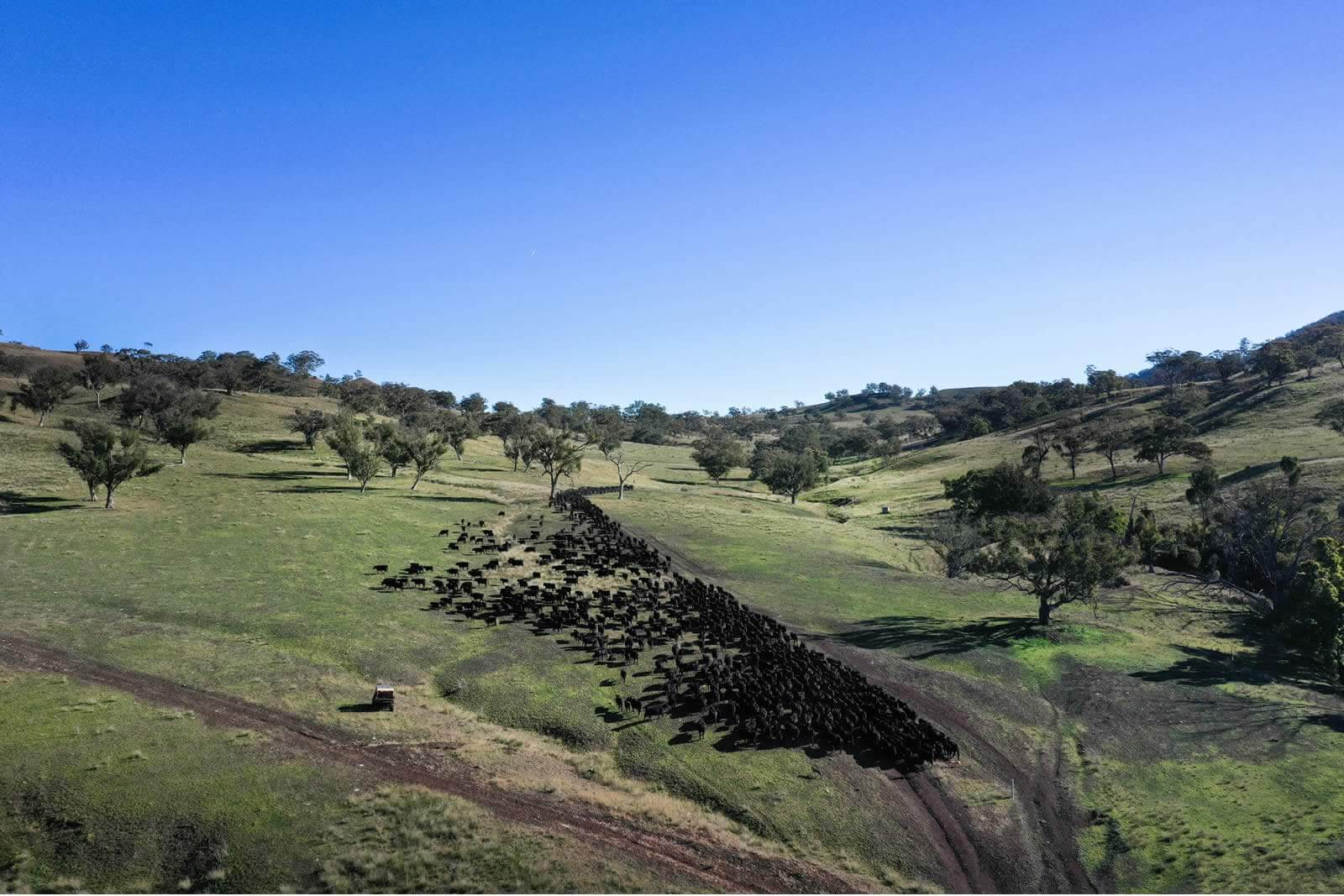 PRESS RELEASE: Gibbergunyah, Scone – Upper Hunter NSW:image property-sale-scone-upper-hunter-nsw-australia