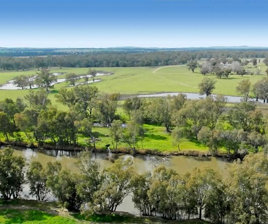 Property for Sale - Wagga Wagga NSW - Berryjerry Station