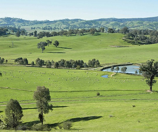 Rural Property for Sle - Strathvean - Riverina NSW