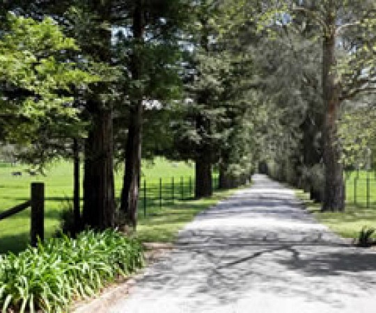 Wandella nsw property for sale Southern Highlands of NSW
