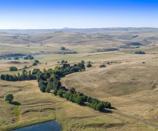 Property for Sale - Monaro District NSW - Rockybah