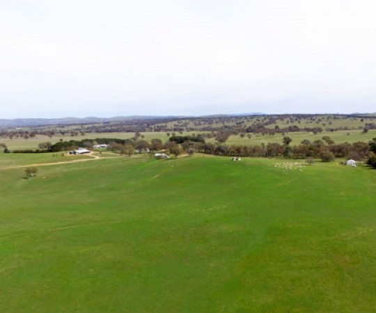 Property for Sale - YASS NSW - Woodlea