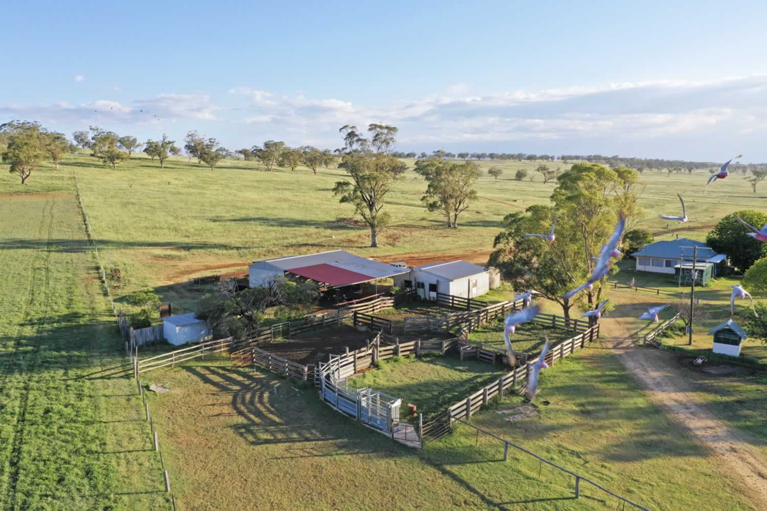 property-for-sale-hunter-valley-11
