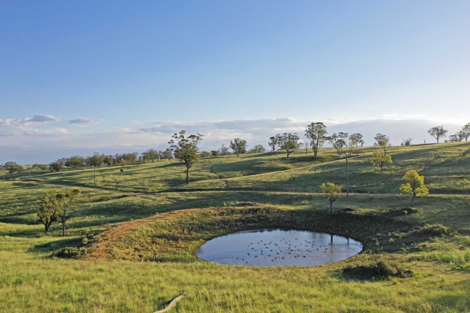 property-for-sale-hunter-valley-12