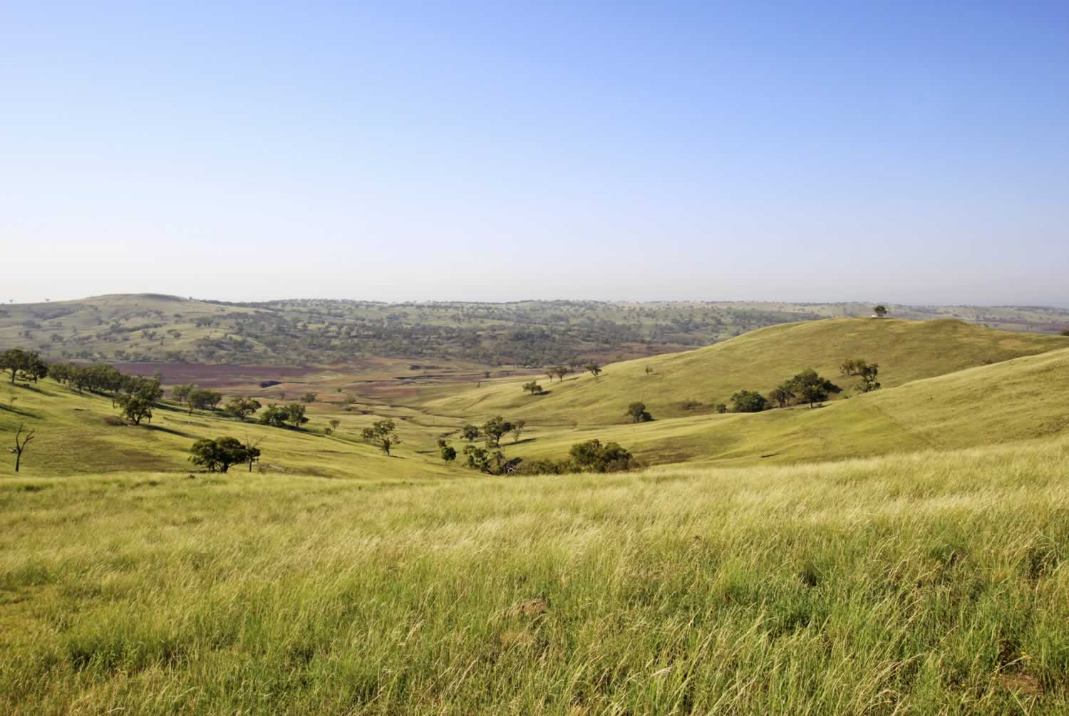 property-for-sale-hunter-valley-1