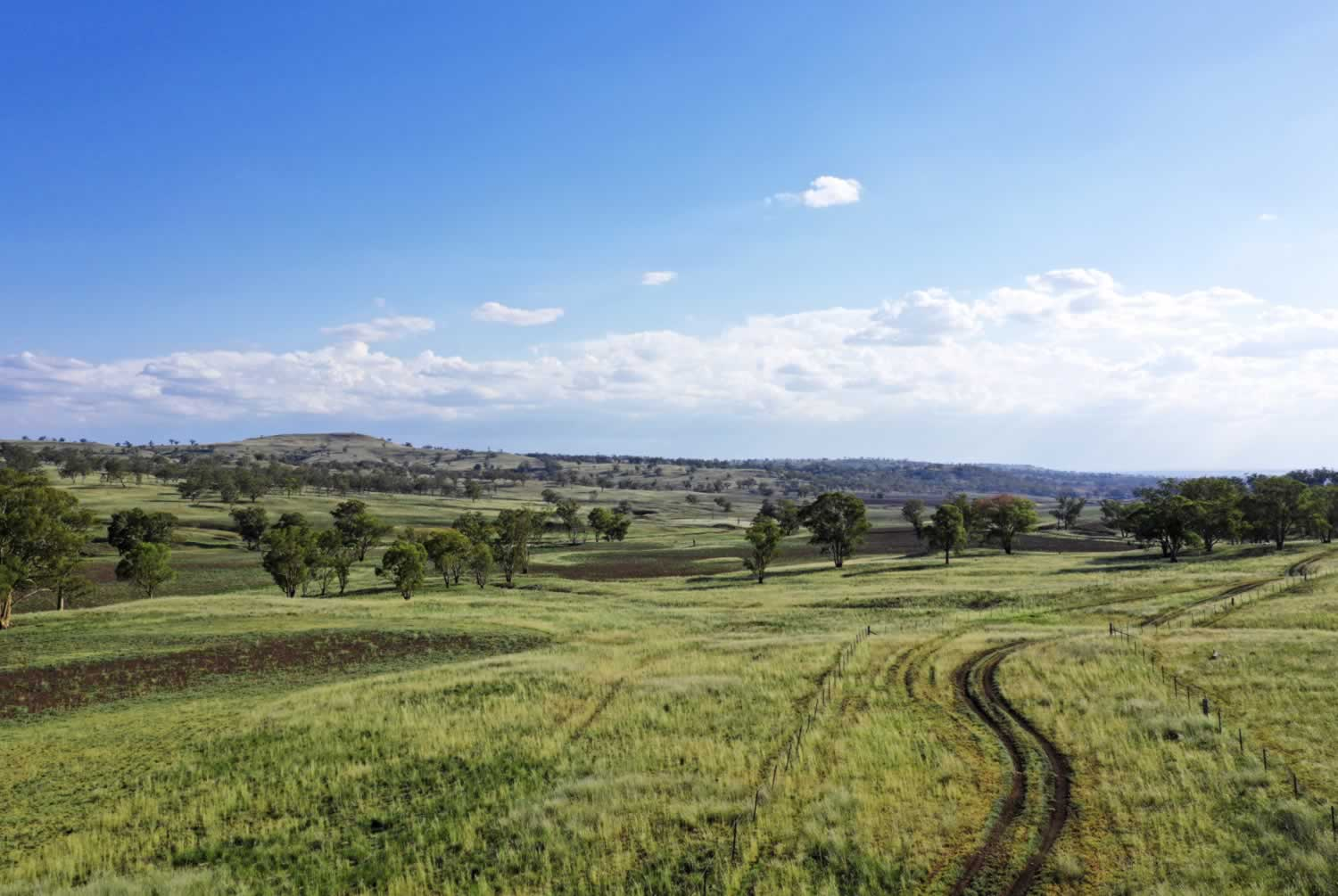 property-for-sale-hunter-valley-9